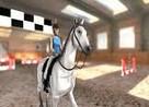 Juego caballo de saltos en 3d