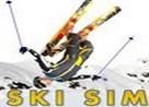 Juego ski simulator