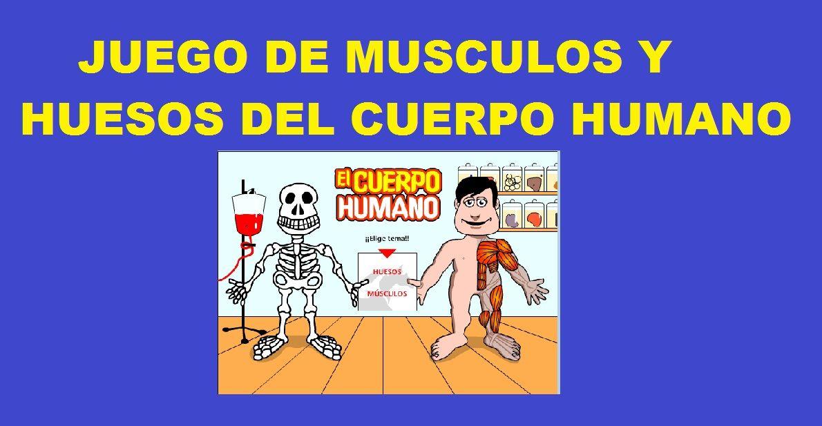 Juego del Cuerpo Humano Musculos y Huesos