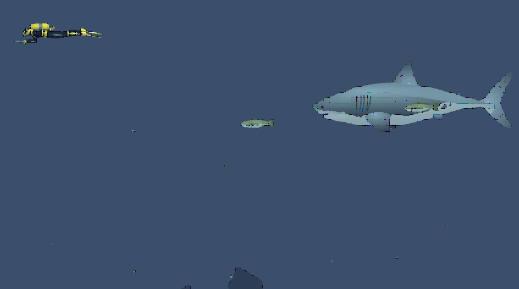 Jugar Shark-Tiburon